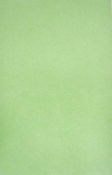 AMPRI-Hygiene, Tray-Filterpapier, 28 x 36 cm, VE = 5 Pack á 250 Stück, Kiwi