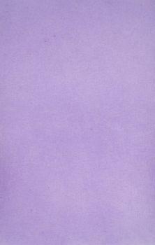 AMPRI-Hygiene, Tray-Filterpapier, 28 x 36 cm, VE = 5 Pack á 250 Stück, lila