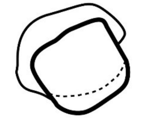 WIROS-Einweg-Vlies Bartschutz, Aluminium Detektorstreifen, Polybeutel, Pkg á 100 Stück, VE: 2000 Stück, rot